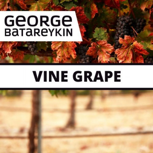 Ароматизатор George Batareykin VINE GRAPE 10мл