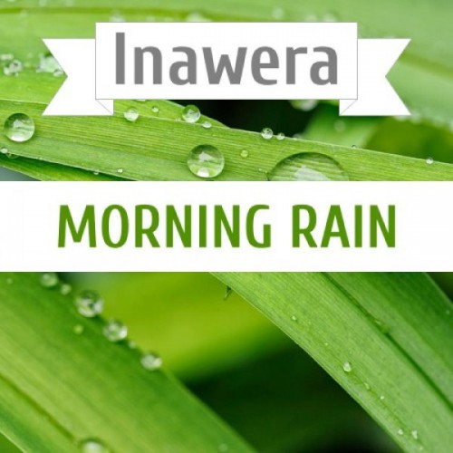 Ароматизатор Inawera Morning Rain